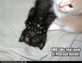 Pharaoh Kitteh
