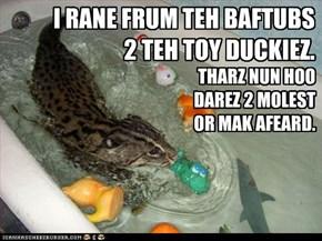 I RANE FRUM TEH BAFTUBS 2 TEH TOY DUCKIEZ.
