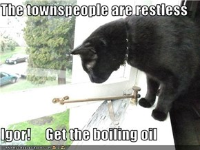 The townspeople are restless  Igor!     Get the boiling oil
