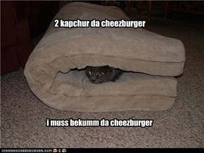 2 kapchur da cheezburger