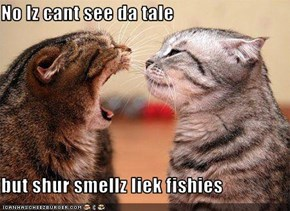 No Iz cant see da tale  but shur smellz liek fishies