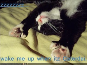 zzzzzzzz...  wake me up when itz Caterdai...