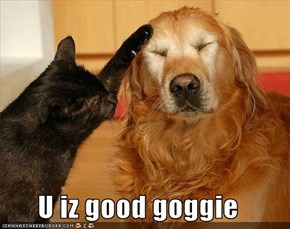 U iz good goggie