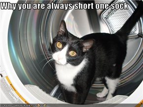 Why you are always short one sock