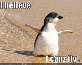 I believe                               I canz fly .