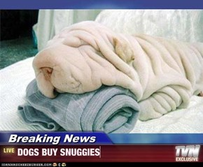 Breaking News - DOGS BUY SNUGGIES