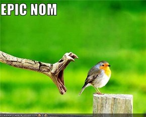 EPIC NOM