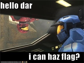 hello dar  i can haz flag?