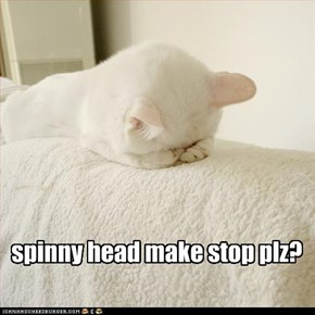 spinny head make stop plz?