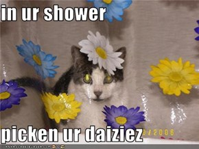 in ur shower  picken ur daiziez