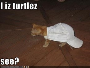I iz turtlez  see?