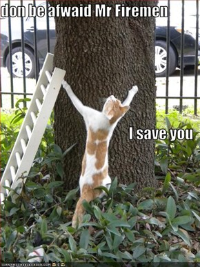 don be afwaid Mr Firemen I save you