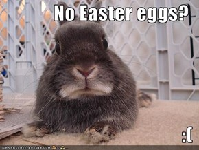 No Easter eggs?  :(