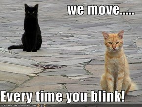 we move.....  Every time you blink!