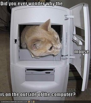 Did you ever wonder why the  mouse is on the outside of the computer?