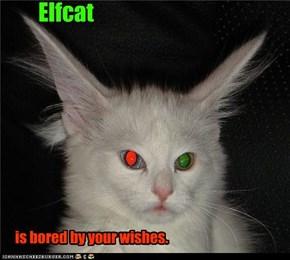 Elfcat