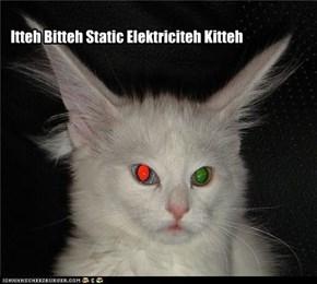 Itteh Bitteh Static Elektriciteh Kitteh