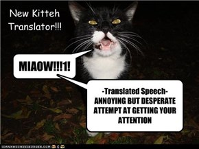 New Kitteh Translator