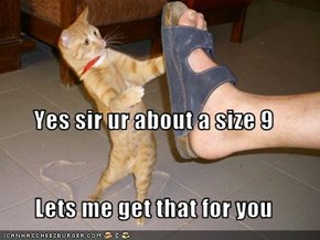 Yes sir ur about a size 9 Lets me get that for you