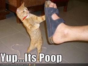 Yup...Its Poop