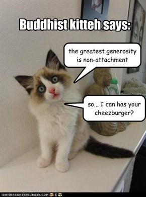 Buddhist kitteh says: