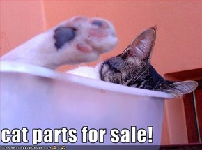 cat parts for sale!