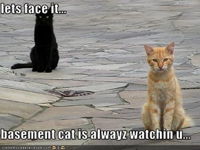 lets face it...  basement cat is alwayz watchin u...