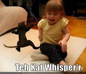 Teh Kat Whisper'r