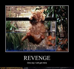 Revenge, an Idea Best Served Wet