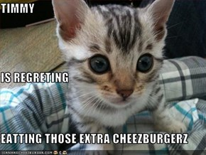 TIMMY IS REGRETING EATTING THOSE EXTRA CHEEZBURGERZ