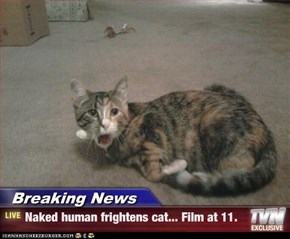 Breaking News - Naked human frightens cat... Film at 11.