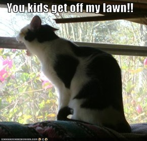 You kids get off my lawn!!