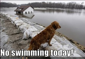 No swimming today!