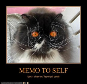 MEMO TO SELF