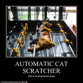 AUTOMATIC CAT SCRATCHER
