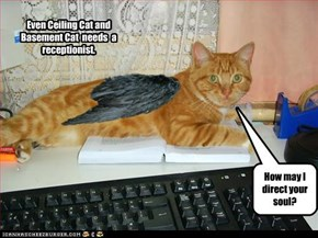 Death's Receptionist