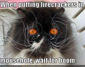 When putting firecrackers in  mousehole, wait for boom.