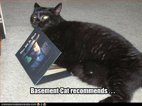 Basement Cat recommends . . .