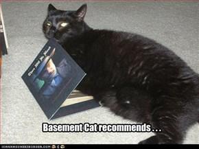 Basement Cat recommends . . .