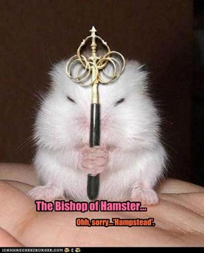 His Holiness..