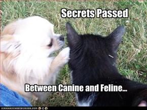 Secrets Passed