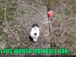I JUS WANTD MAH BALL BAK...