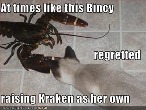 At times like this Bincy regretted raising Kraken as her own