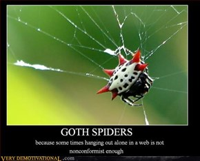 goth spiders