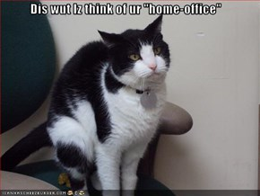 "Dis wut Iz think of ur ""home-office"""