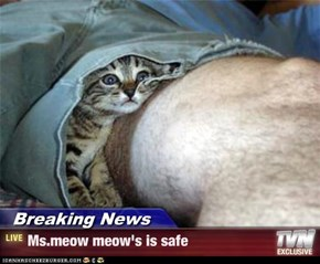 Breaking News - Ms.meow meow's is safe