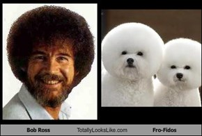 Bob Ross Totally Looks Like Fro-Fidos