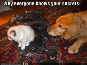 Why everyone knows your secrets: