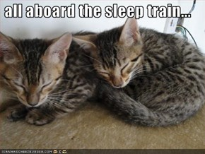 all aboard the sleep train...