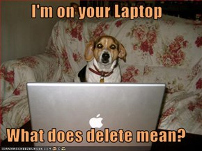 I'm on your Laptop  What does delete mean?